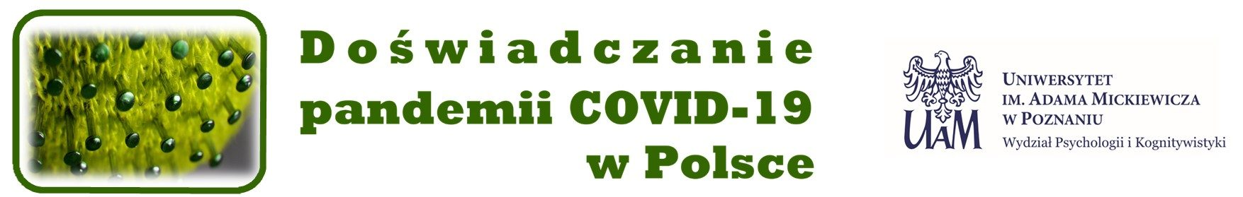 DOŚWIADCZANIE PANDEMII COVID-19 W POLSCE
